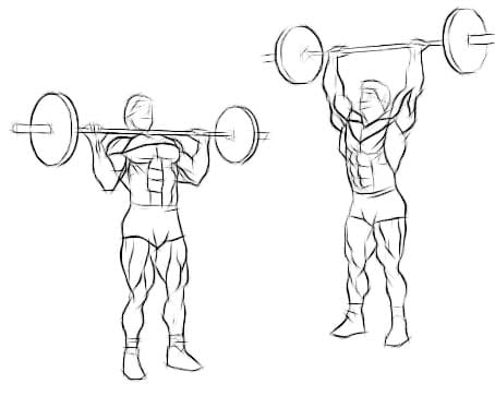 The overhead press is a tremendous exercise for the delts, triceps, and upper chest