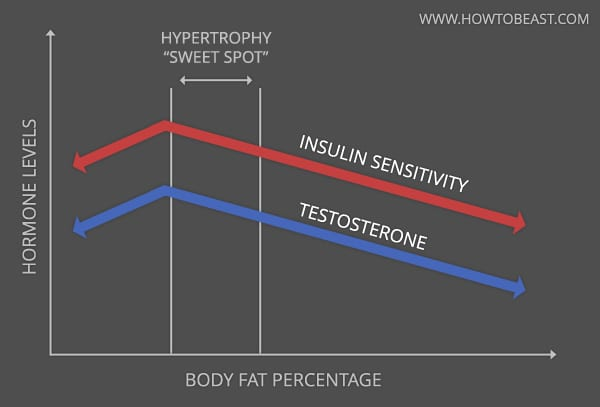 body-fat-hormone-levels-graph