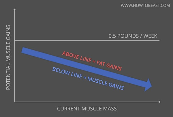 max-muscle-gains-graph